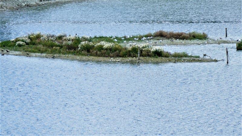 La isla innomada en el lago imagen de archivo