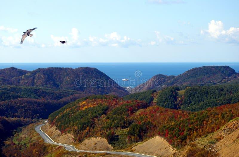 La isla Sakhalin del otoño. El paisaje de la montaña fotografía de archivo libre de regalías