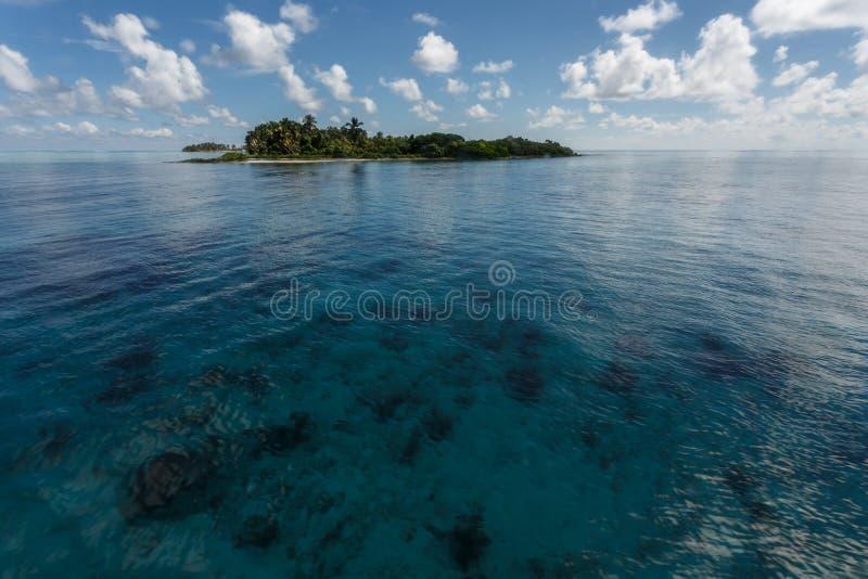 La isla tropical sube sobre el arrecife de coral en HOL Chan Marine Reserve Belize imagen de archivo libre de regalías