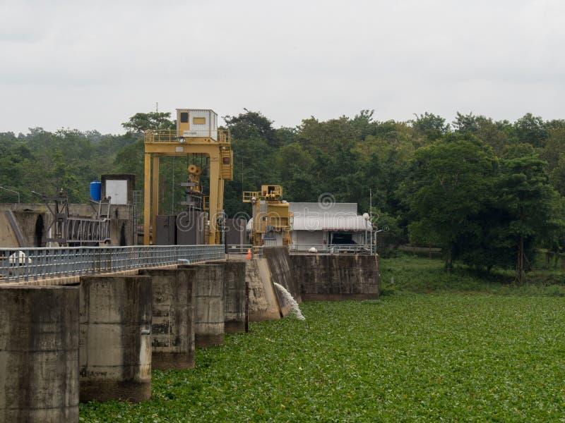 La jacinthe d'eau a couvert toute la surface de l'eau dans le secteur supérieur de barrage au barrage de mool de PAK, Ubon Ratcha photographie stock