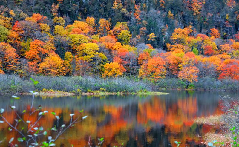 La Jacques Cartier national de Parc De image stock