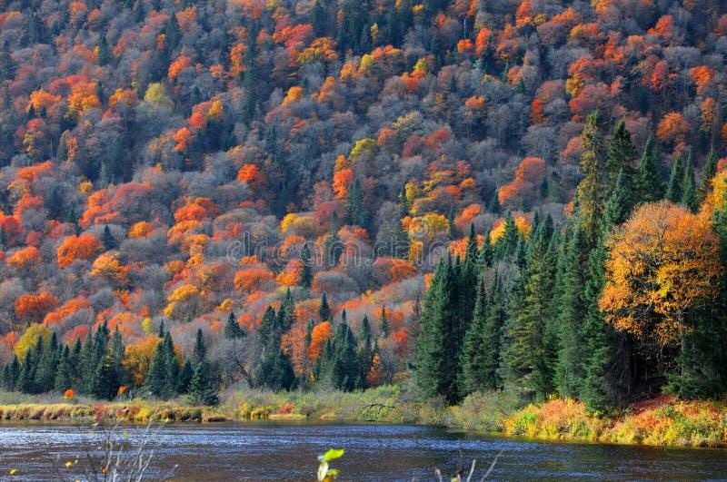 La Jacques Cartier national de Parc De photos stock