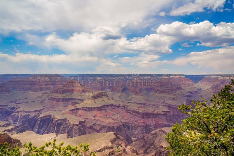 La jante du sud de Grand Canyon image libre de droits