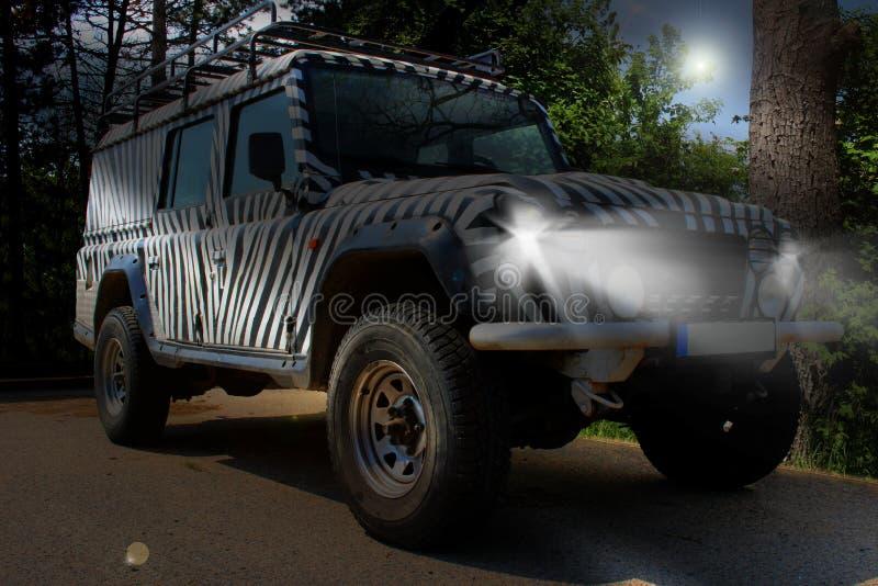 La jeep di safari con un modello della zebra guida attraverso una bella natura in pieno degli alberi e dei cespugli di un parco n fotografie stock
