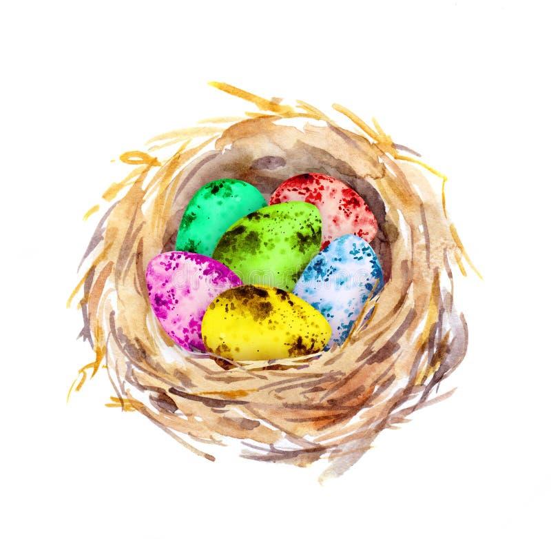 La jerarquía con Pascua coloreó los huevos watercolor ilustración del vector