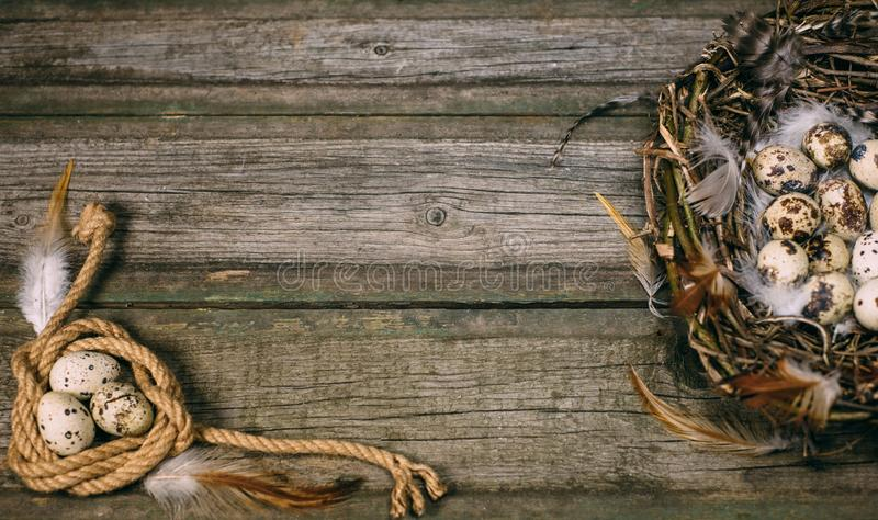 La jerarquía del pájaro con los huevos de codornices y la pluma en una lado y cuerda arrollan con el huevo en otra en fondo de ma fotos de archivo