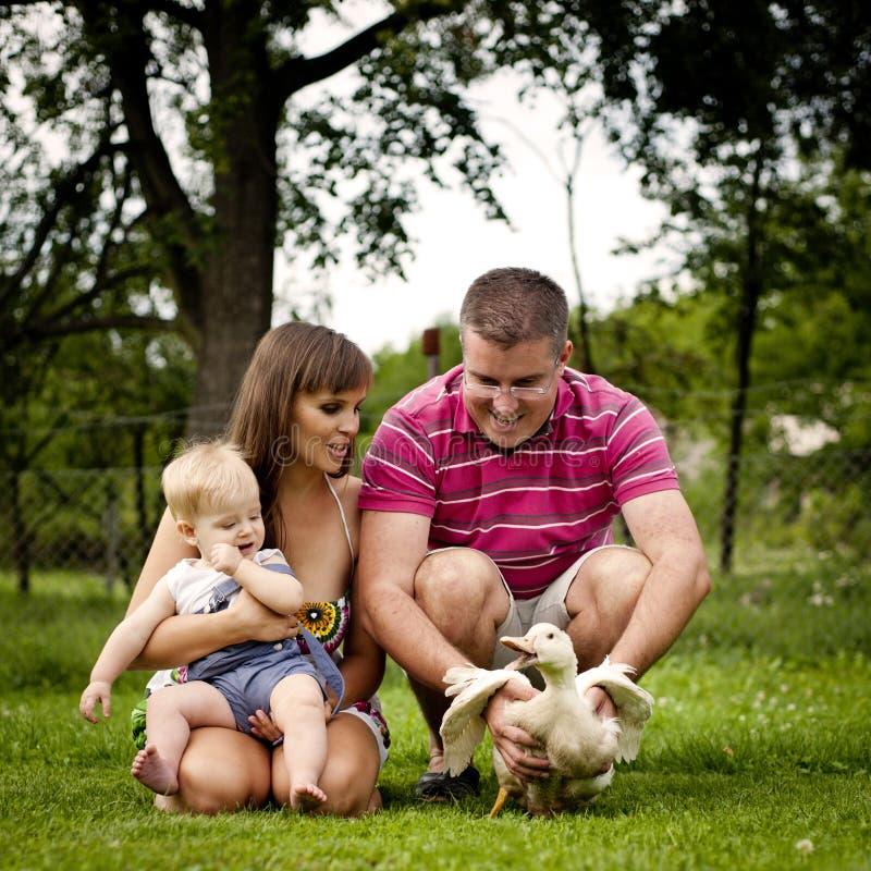 Famille à la ferme photo stock