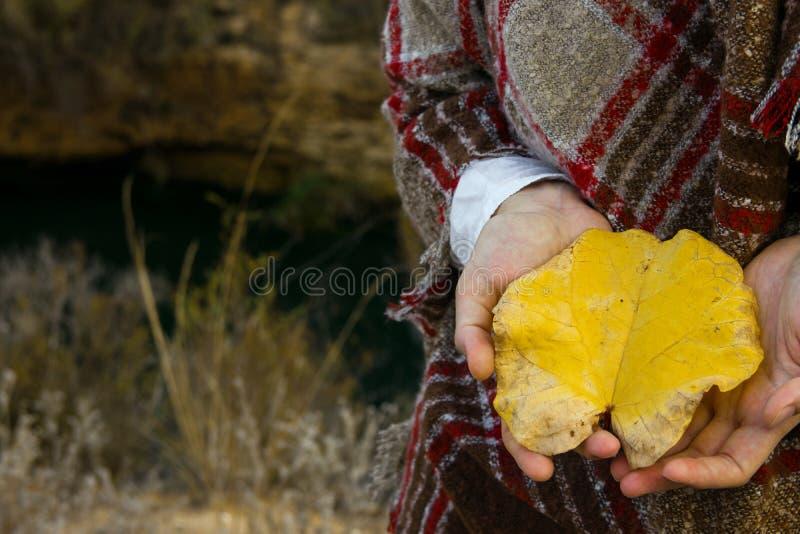 La jeune femme caucasienne dans le plaid à carreaux de laine tient la feuille jaune lumineuse disponible dans le pré de champ L'a image libre de droits