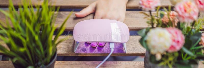 La jeune femme fait la manucure avec le poli de gel et la lampe UV dans la BANNIÈRE rose de nuances, LONG FORMAT image stock