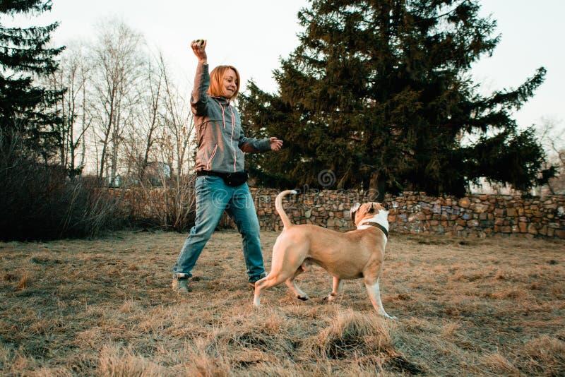 La jeune femme forme son chien en parc de soirée photographie stock libre de droits