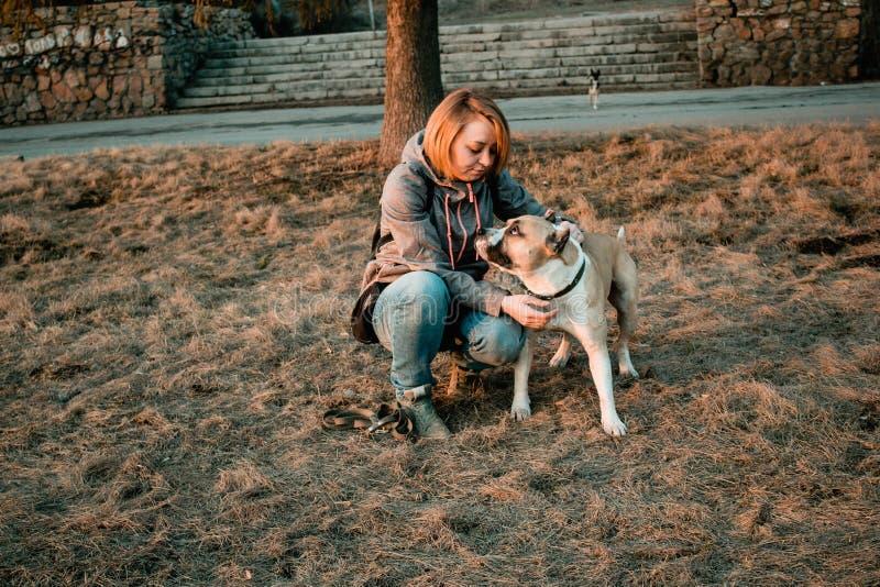 La jeune femme regarde son chien en parc photographie stock