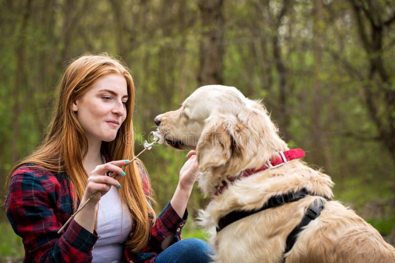 La jeune femme rousse alimente les guimauves de chien photo stock