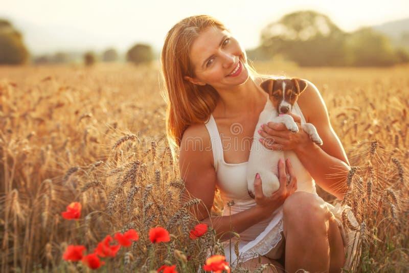 La jeune femme tient le chiot de terrier de Jack Russell sur ses mains, pavots rouges dans le premier plan, champ de blé allumé p photos stock