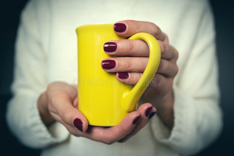 La jeune femme tient une tasse avec une boisson chaude dans des ses mains photographie stock