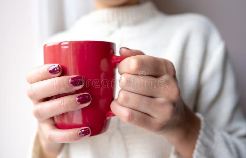 La jeune femme tient une tasse avec une boisson chaude dans des ses mains photographie stock libre de droits
