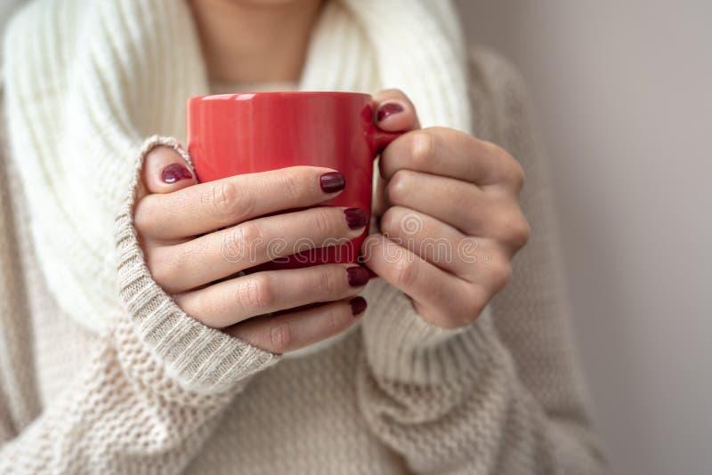 La jeune femme tient une tasse avec une boisson chaude dans des ses mains photo stock