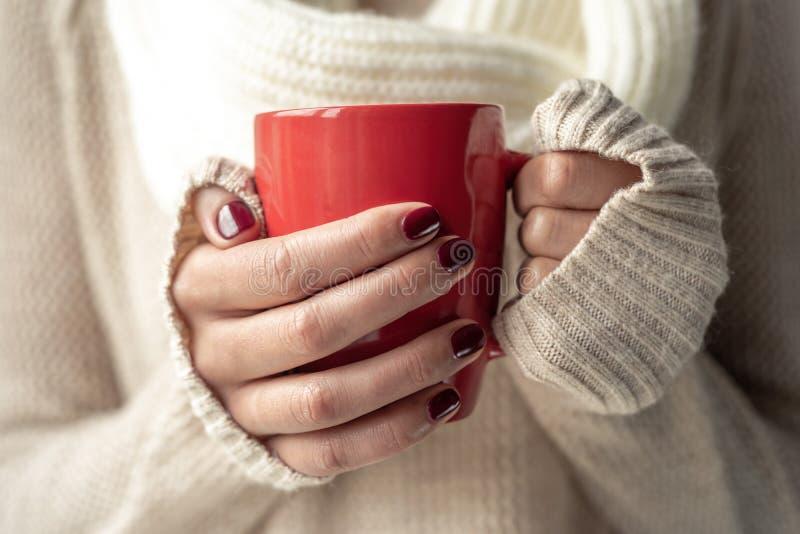 La jeune femme tient une tasse avec une boisson chaude dans des ses mains image libre de droits