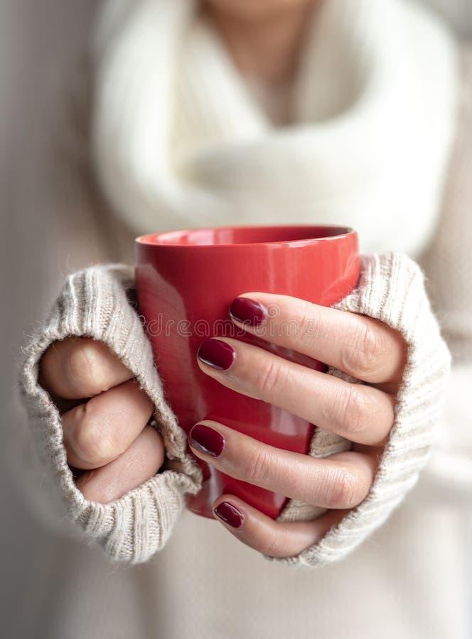 La jeune femme tient une tasse avec une boisson chaude dans des ses mains photos libres de droits