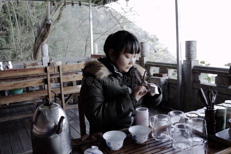 La jeune fille chinoise fait un thé chinois images libres de droits