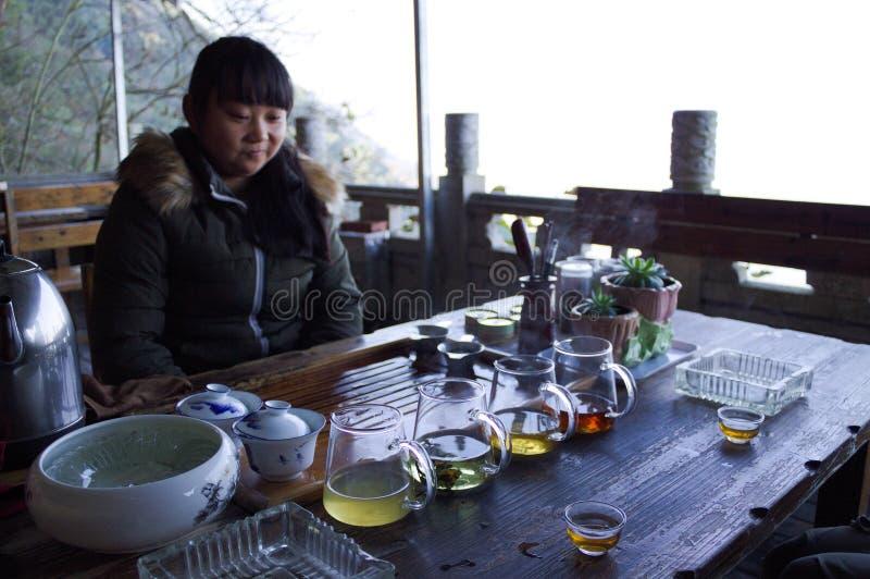 La jeune fille chinoise fait un thé chinois photographie stock libre de droits