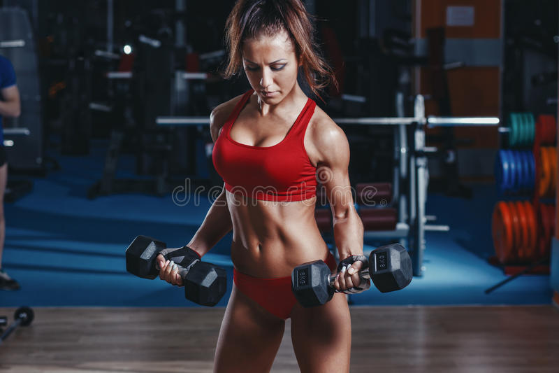la jeune fille sexy d'athlétisme faisant des haltères de biceps courbent des exercices sur le banc dans le gymnase images libres de droits