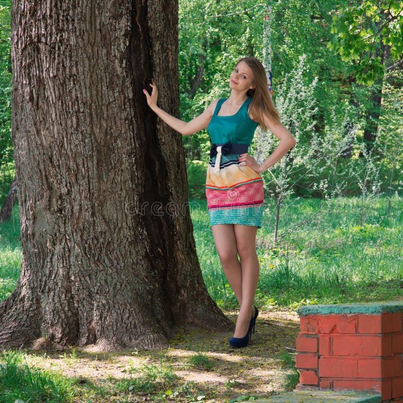 La jeune gentille fille mince dans une ombre d'arbre image stock