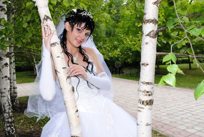 La jeune mariée dans une robe de mariage est au bouleau images stock