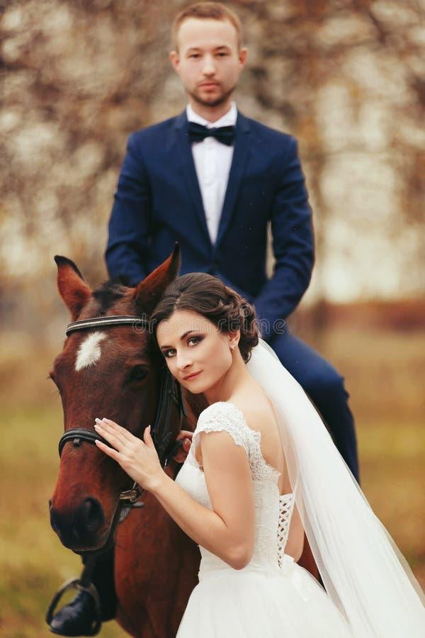 La jeune mariée se tient derrière un cheval tandis que le marié s'assied sur son dos images stock