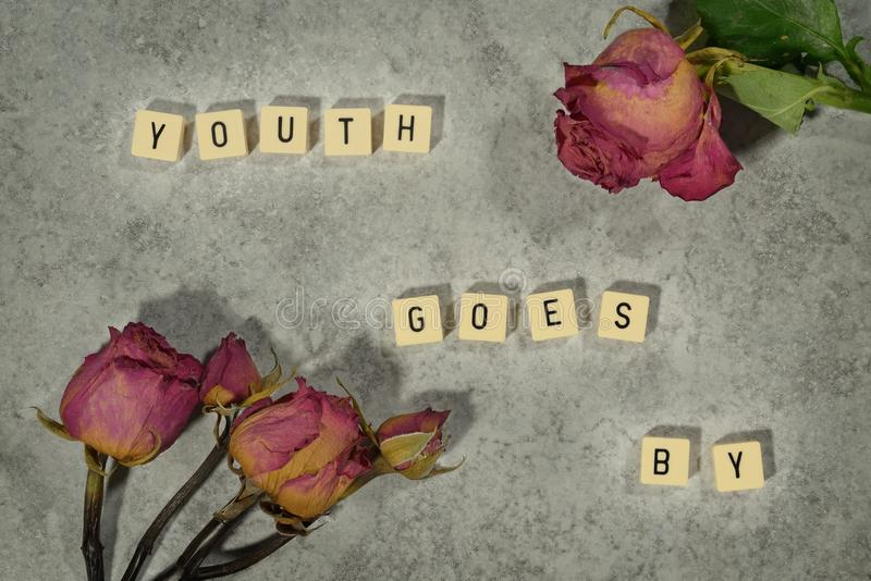 La jeunesse va par Roses fanées Massage des textes Dessus de table de marbre illustration stock