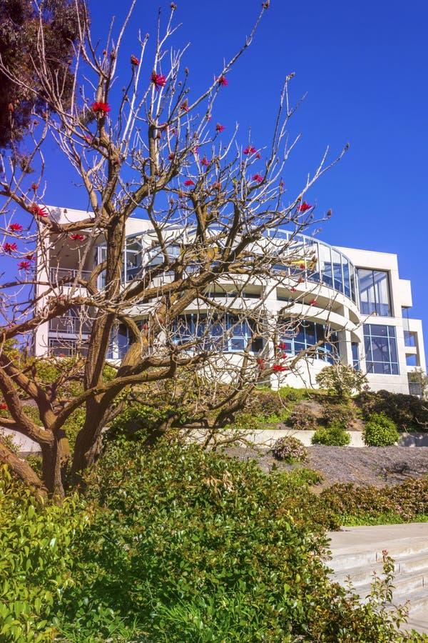 La Jolla, California, USA - April 4, 2017: Campus of University of California San Diego. Naked coral tree blossom in the front. La Jolla, California, USA royalty free stock photo