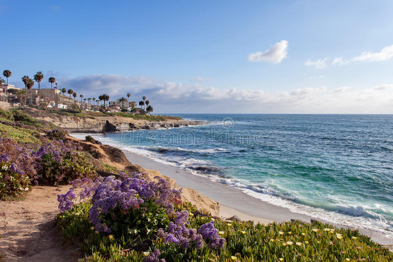La Jolla - Southern California. United States of America royalty free stock photo
