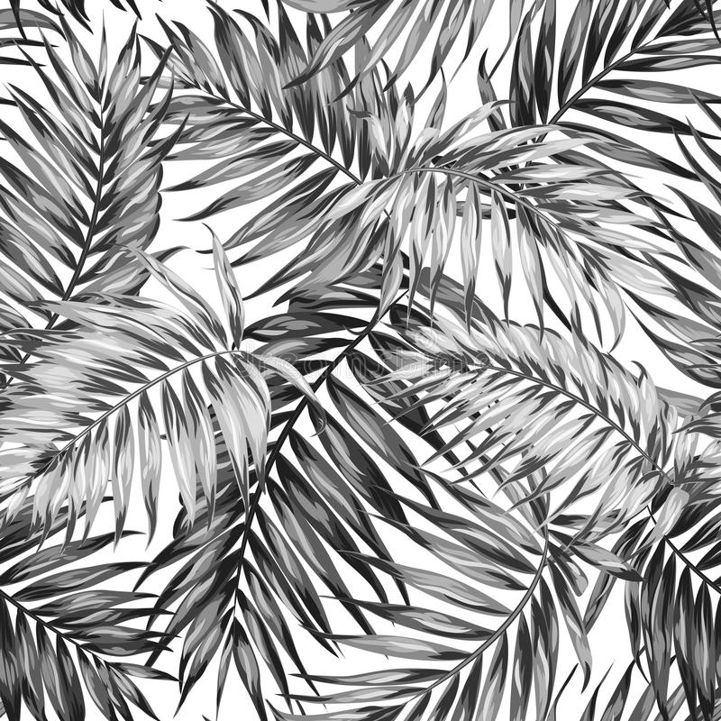 La jungle tropicale de modèle sans couture part du blanc noir illustration de vecteur