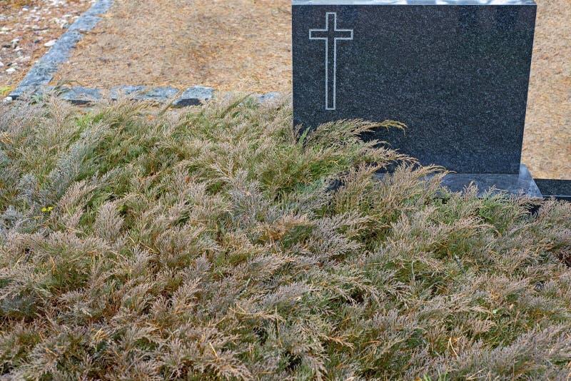 La lápida mortuaria negra con la cruz pintada en la esquina rodeada por el thuja se va fotografía de archivo