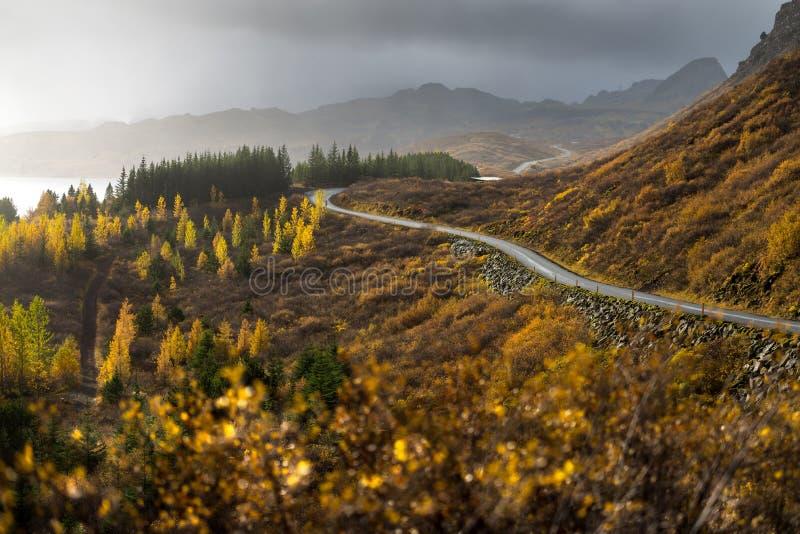 La línea del camino directa adentro a la montaña en la estación del otoño fotografía de archivo libre de regalías