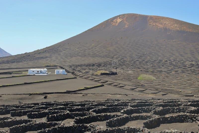 La La famosa Geria di area di viticoltura su Lanzarote, isole Canarie, Spagna immagini stock