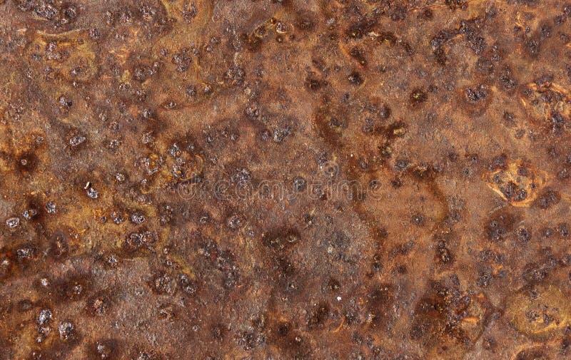 La lamina di metallo ha corroso la struttura significativa ossidata arrugginita del fondo immagine stock