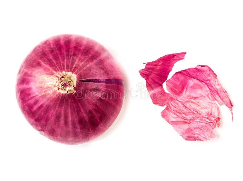 La lampadina della cipolla rossa e la buccia fresche della cipolla isolata su backgr bianco fotografia stock libera da diritti
