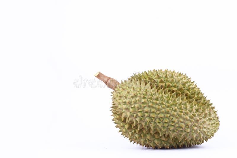 La lanière de lundi de durian est roi de durian de fruits sur la nourriture saine fraîche de fruit de durian de fond blanc d'isol photo libre de droits