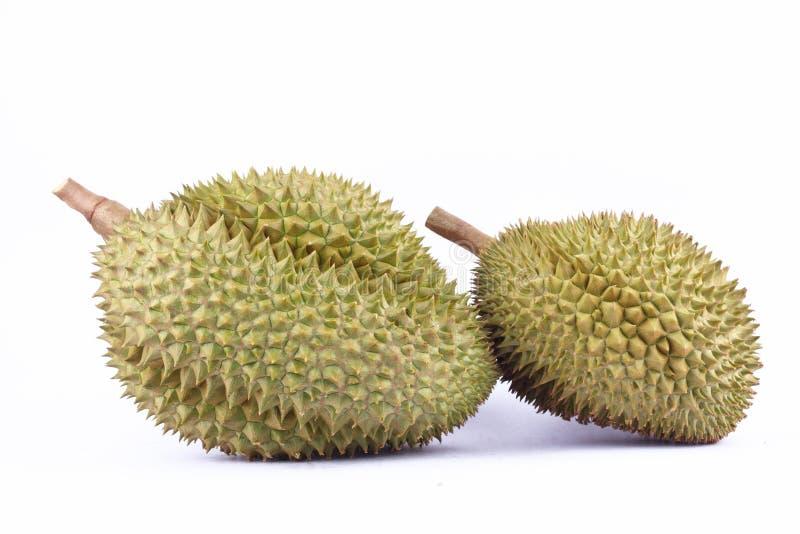 La lanière jaune de lundi de durian est roi de durian de fruits sur la nourriture saine de fruit de durian de fond blanc d'isolem images libres de droits