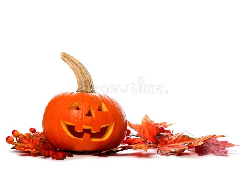 La lanterna di Halloween Jack o con le foglie di autunno rasenta il bianco fotografia stock