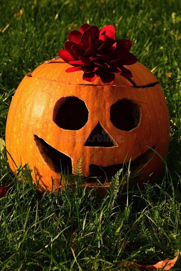 La lanterne drôle de sourire de Halloween Jack O faite de gougé potiron découpé avec de grands yeux ronds, choisissent la grande  photo libre de droits