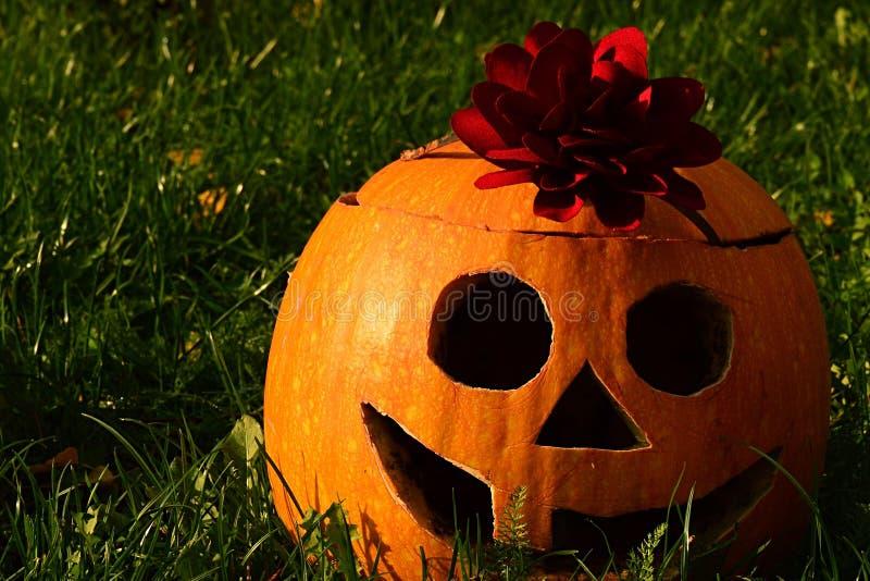 La lanterne drôle de sourire de Halloween Jack O faite de gougé potiron découpé avec de grands yeux ronds, choisissent la grande  photo stock