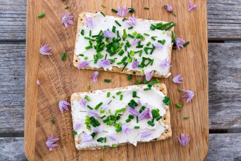 La latteria due ed il vegano senza lattosio scremano il formaggio da spalmare fatto dalla c fotografia stock
