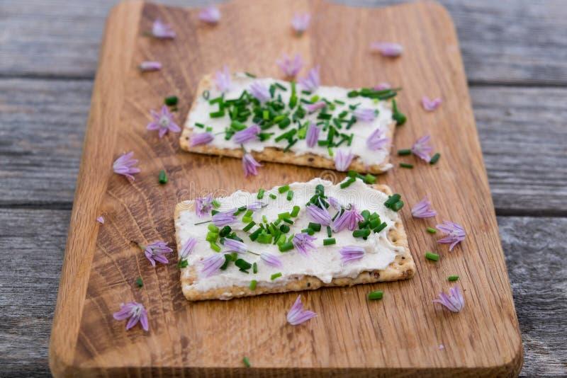 La latteria due ed il vegano senza lattosio scremano il formaggio da spalmare fatto dalla c immagine stock