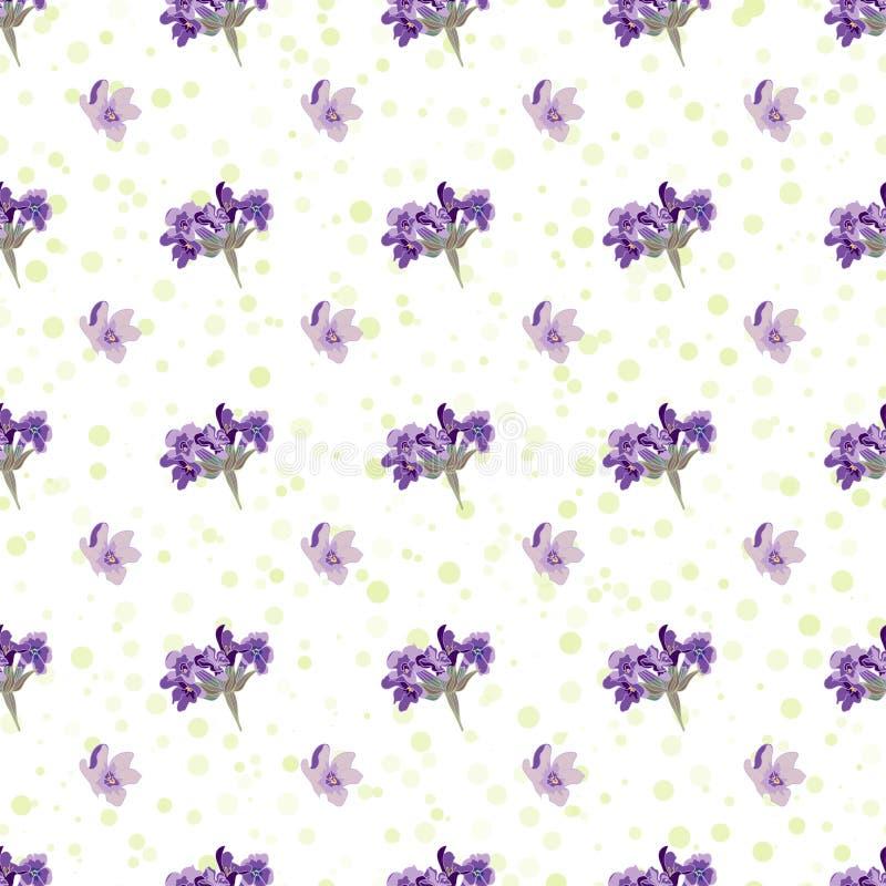 La lavande sans couture fleurit le fond Illustration botanique illustration de vecteur