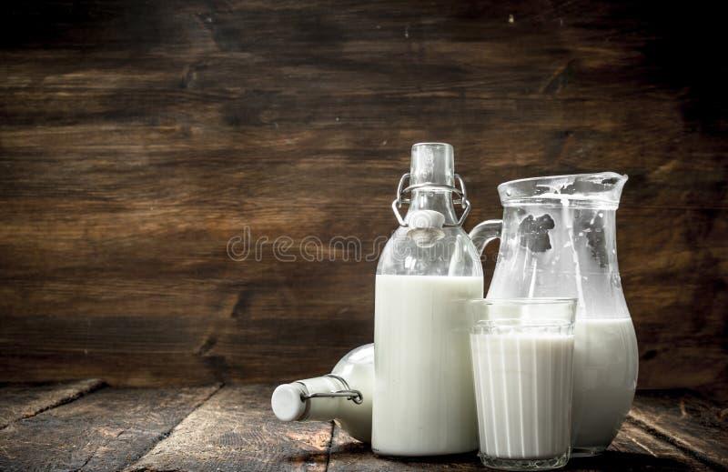 La leche de vaca fresca imagen de archivo libre de regalías