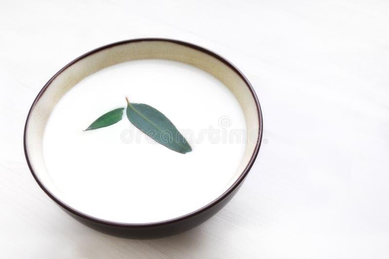 La leche en tazón de fuente con la hoja adorna foto de archivo