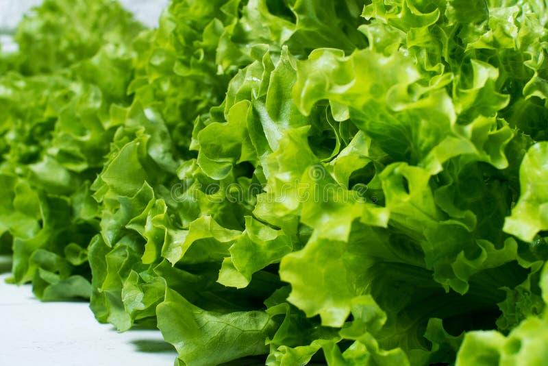 La lechuga verde se va en un fondo de la pared de ladrillo blanca, comida sana fresca de la ensalada en la tabla de cocina, mofa  fotografía de archivo libre de regalías