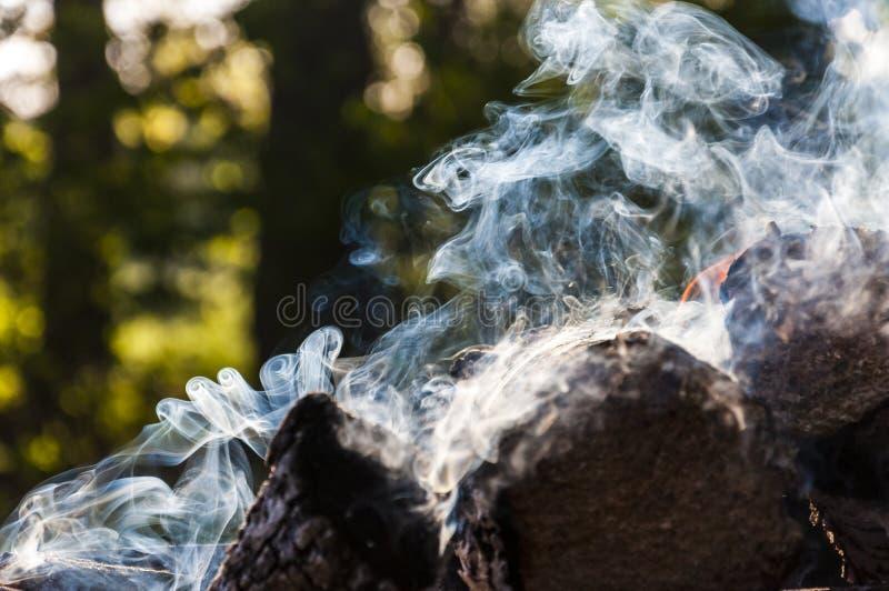La legna da ardere bruciante fa il vario fumo fare scorrere le forme immagine stock