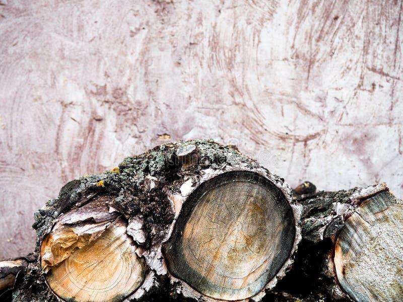 La legna da ardere tagliata collega il mucchio Priorit? bassa della natura Preparazione del legno Grande mucchio di legno tagliat immagini stock
